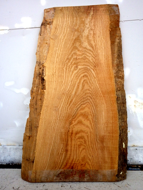 欅 950×290~470×20 玉杢の現れた耳付きの薄板です。幅方向に少し反りがあります。上端に410ミリ、下端に200ミリの干割れがあります。